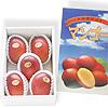 沖縄産ご贈答用マンゴー 秀品 約2kg